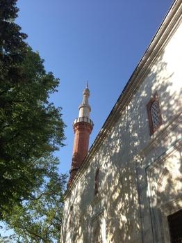 Green Mosque Sunlight