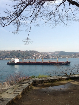 Ships on the Bosphorus (1)