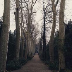 Walking in the Boboli Gardens