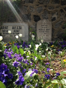Flowers in the graveyard
