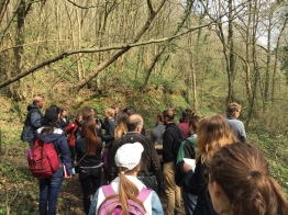 Us (+the grads) trekking around the Belgrade Forest