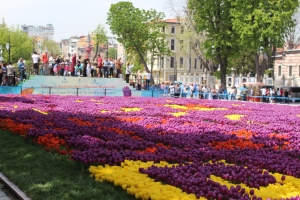 Tulips in bloom and tourists crowding.